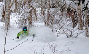 WSSA-JAPAN-POWDERCAMP-JORDA1