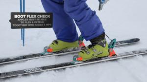 WSSA Ankle Flex