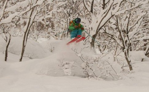 WSSA Japan Powder Camp Pillows